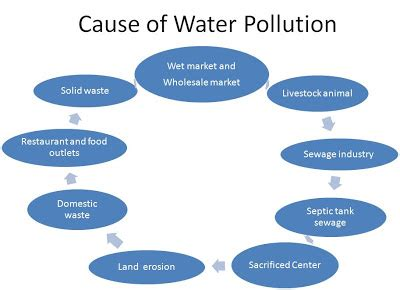 Environmental Problems And Its Solutions Essay Sample